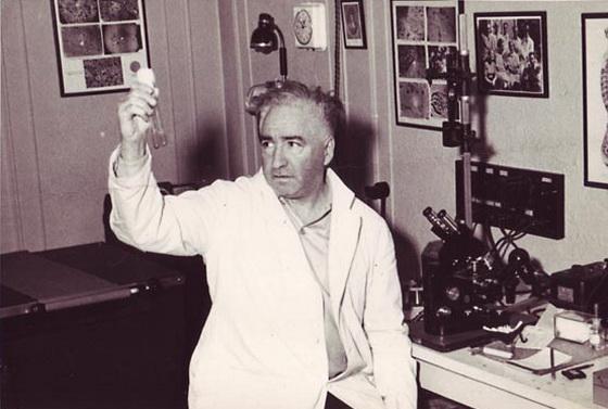 Wilhelm-Reich-orgonoterapia-Bioenergetica-lecco