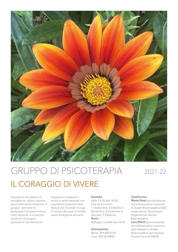 Gruppo-Psicoterapia-bioenergeticalecco-marta-pozzi